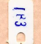 Stenocorpus lactichroma